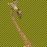 batman20213
